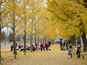 秋を楽しむ~生活校外学習