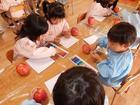 年中組 リンゴの絵を描こう
