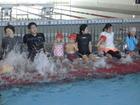 親子水泳教室(8月3日)