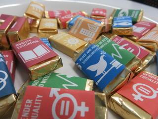 個性豊かなSDGsへの取り組み (国際看護論)